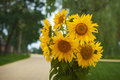Bouquet Of Yellow Sunflowers O...