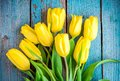 Bouquet of yellow tulips on a blue rustic background Royalty Free Stock Photo