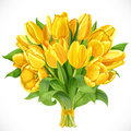 Bouquet of yellow tulips isolated on a white background Stock Photography
