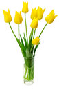 Bouquet of yellow tulips in a vase isolated on white background Stock Photo