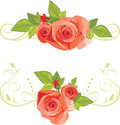 Bouquets of roses. Decorative borders Royalty Free Stock Photos
