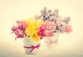 Bouquets from tulips and lilac Stock Photography