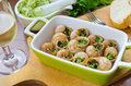 Bourgogne snails with garlic butter Stock Photos
