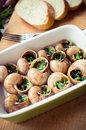 Bourgogne snails with garlic butter Royalty Free Stock Images