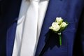 Boutonniere flower on jacket of wedding groom Royalty Free Stock Photo