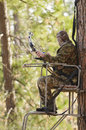 Bow hunter in a ladder style tree stand with at full draw demonstrating good safety by using a safety harness Royalty Free Stock Photos