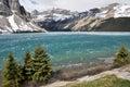Bow Lake, Rocky Mountains (Canada) Royalty Free Stock Photo