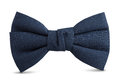 Bow tie blue isolated with clipping path Stock Image