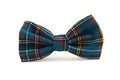 The bow tie Royalty Free Stock Photo