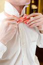 Bow tie groom getting ready a close up of a man in a white shirt adjusting his Royalty Free Stock Images
