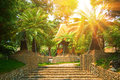 Bower in tropical park with sunrays Royalty Free Stock Photo