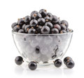Bowl with black currant isolated Royalty Free Stock Photo
