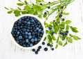 Bowl with blueberries on a old wooden background Royalty Free Stock Photo