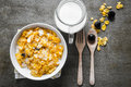Bowl of cereal. Royalty Free Stock Photo