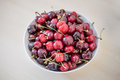 Bowl of cherries Royalty Free Stock Photo