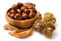 Bowl of Chestnuts Royalty Free Stock Photo