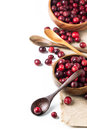 Bowl of cranberries Royalty Free Stock Photo