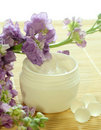 Bowl of cream and flowers. Royalty Free Stock Photo
