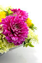 Bowl with dahlia arrangement Royalty Free Stock Photography