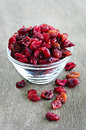 Bowl of dried cranberries Royalty Free Stock Image
