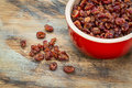 Bowl of dried cranberries in a stoneware on a grunge painted wood background Stock Photos