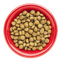 Bowl of dry dog food Stock Photos