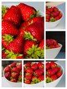 Bowl filled with succulent juicy fresh ripe red strawberries white Royalty Free Stock Photography