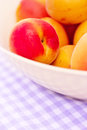 Bowl of fresh apricots cherries Stock Images