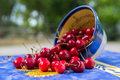 Bowl fresh cherries full outdoor Stock Photography
