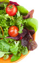 Bowl of fresh green salad with tomatoes Stock Photography