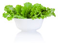 Bowl with fresh leaves green lettuce isolated on white background Royalty Free Stock Image