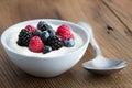 Bowl of fresh mixed berries and yogurt Royalty Free Stock Photo