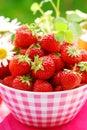 Bowl of fresh strawberries Royalty Free Stock Photo