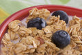 Bowl of Granola and Blueberries and Milk Royalty Free Stock Photography