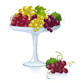 Bowl with grapes vector illustration Stock Images