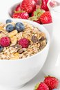 Bowl of muesli with fresh berries and milk close up healthy on white background Royalty Free Stock Photography