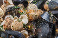 A bowl of mussels and other different shellfish Royalty Free Stock Photos