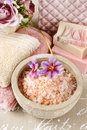 Bowl of pink sea salt Royalty Free Stock Photo