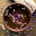 Bowl of pure water and lavender petals Stock Photos