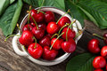 Bowl with red cherries, freshly picked cherries Royalty Free Stock Photo