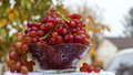 Bowl of red grapes big glass juicy set in outdoor background Stock Image
