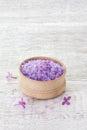 Bowl with sea salt wood Royalty Free Stock Photos