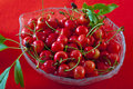Bowl with sour cherries Royalty Free Stock Photo