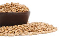 Bowl of wheat grain Stock Photography