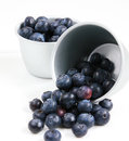 Bowls of blueberries on white background Stock Images
