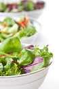 Bowls of fresh green salad Royalty Free Stock Photo