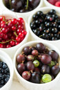 Bowls with fresh ripe gooseberry, red currant, black currant, raspberry, blueberry and cherry Royalty Free Stock Photo