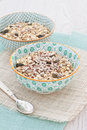 Bowls of oats with nuts and seeds Royalty Free Stock Photo