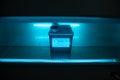 Box with danger virus content under UV ultraviolet light