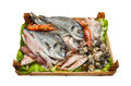 Box of fresh fish on white background. Royalty Free Stock Photo